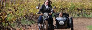Vintage Sidecar Wine-lands Experience Tour Packages